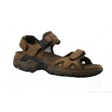 Allrounder Mens Sandal - Alligator